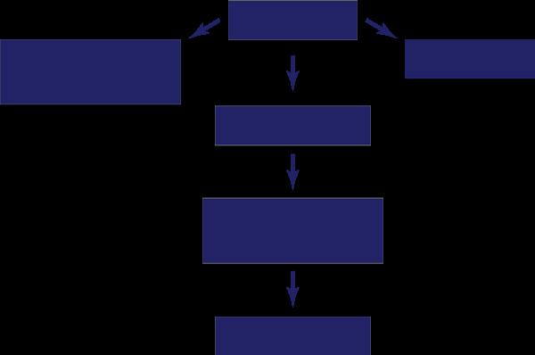 Пациенты Украины — структура